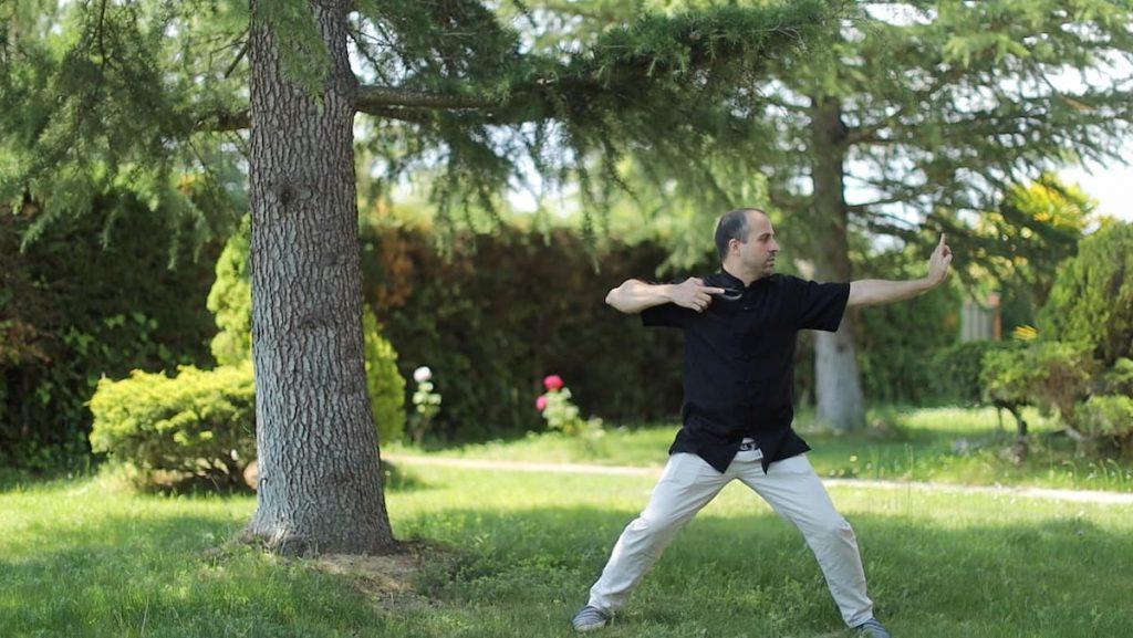 Chi Kung Shaolin - Gran Maestro Wong Kiew Kit