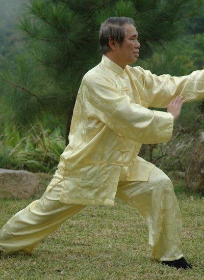 Cursos del Gran Maestro Wong Kiew Kit - Wahnam Tai Chi Chuan
